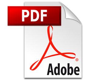 Podatność w blokowaniu plików osadzonych w Adobe Reader