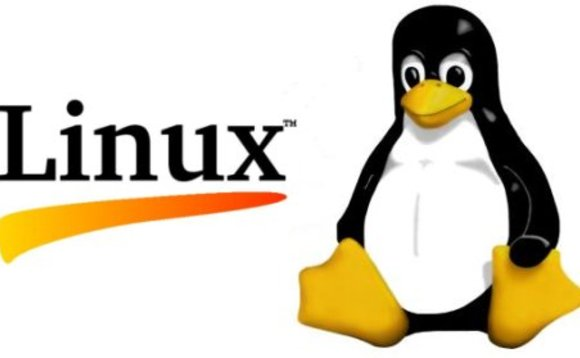 Kolejna luka w jądrze systemu Linux